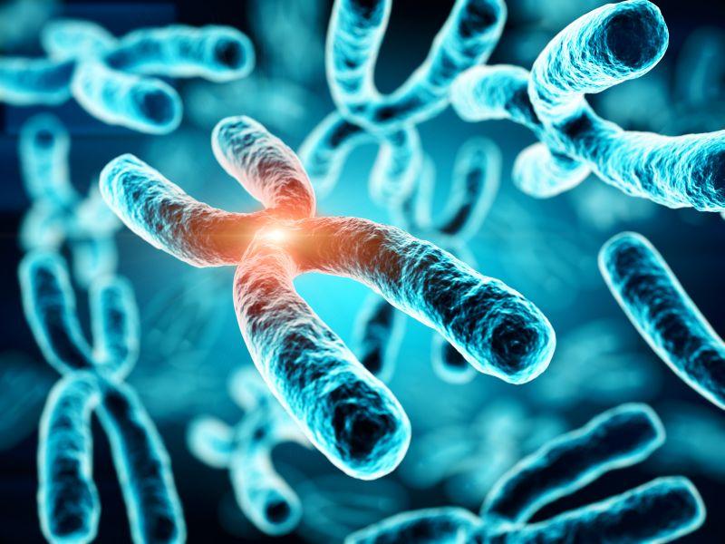 Test del Cromosoma x frágil (Madrid)